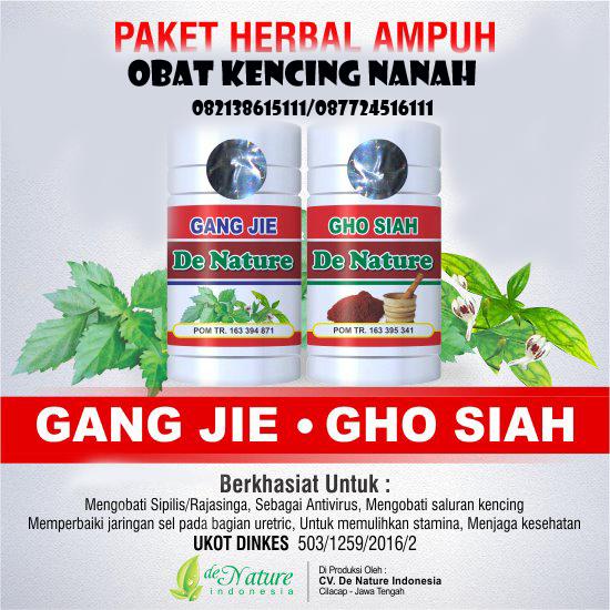Ini Obat Herbal Untuk Kencing Nanah